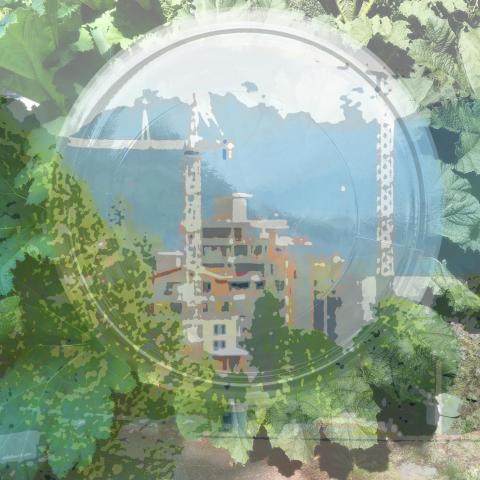 Vision, A vision, Jam jar, Jam jar photo, Sewell's Development.